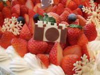 Shachi_cake