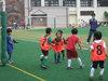 soccer_gallmae